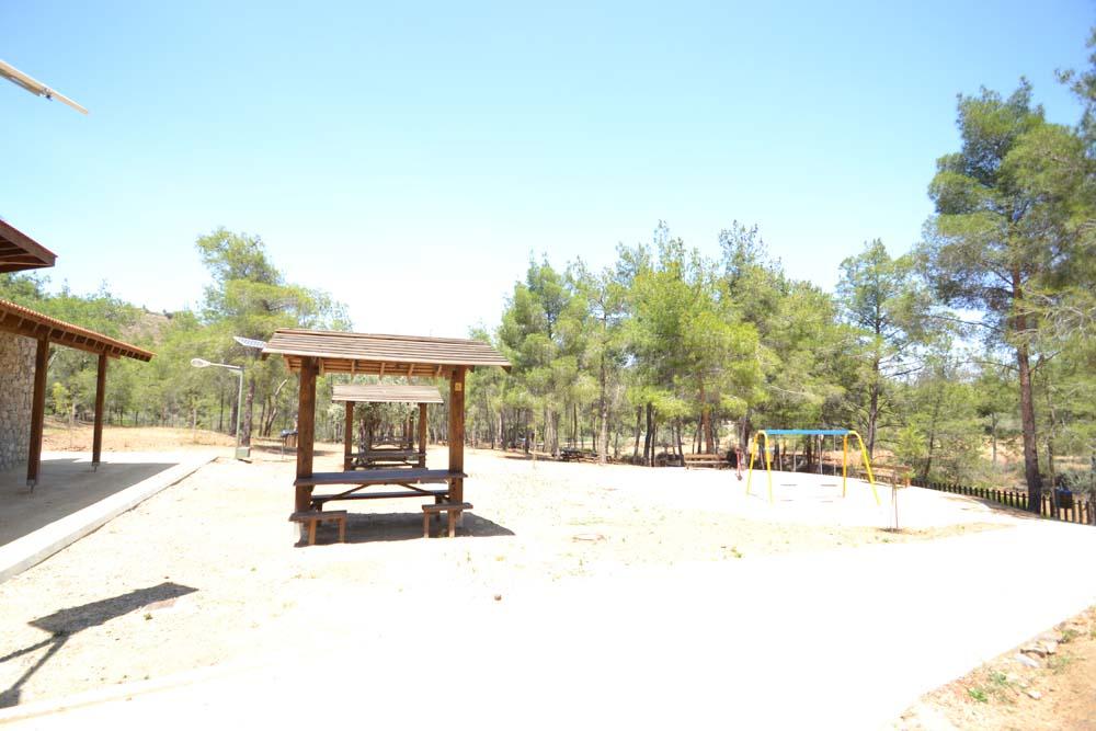 picnic_area_10