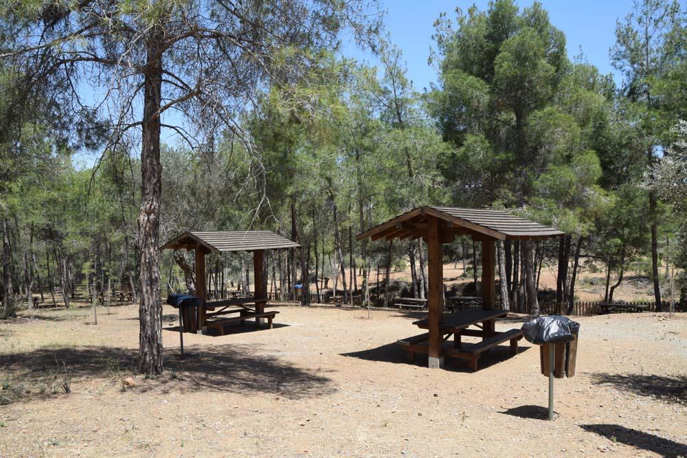 picnic_area_7