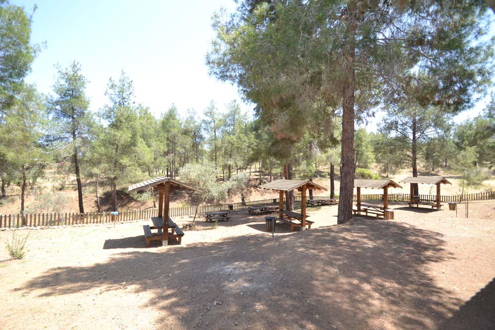 picnic_area_9